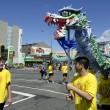 Wellington Chinese New Year Snake — Photo