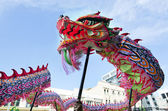 Wellington Chinese New Year Snake — 图库照片