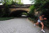центральный парк - нью-йорк — Стоковое фото