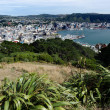 Wellington Harbor — Stockfoto