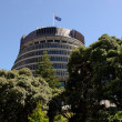 Royalty-Free Stock Photo: Parliament of New Zealand