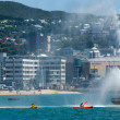 Stock Photo: Wellington Cityscape