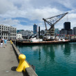 Wellington Cityscape — Stock Photo #22434797