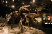 Dinosaurs — Stock Photo