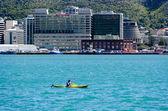 Wellington Cityscape — Stock Photo
