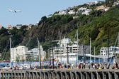 Wellington waterfront — Stock Photo
