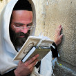 Stock Photo: Wailing Wall - Israel