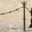 Stock Photo: Kotel - Israel