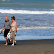 Sumner beach in Christchurch New Zealand — Stock Photo