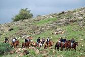 Golan Heights - Israel — Stock Photo