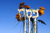 Passover Jewish Holiday — Stock Photo