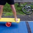 Balance board — Stock Photo #23939485
