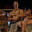 Maori Cultural Show — Stock Photo #24642531