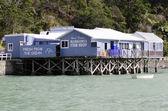 Mangonui fish and chips shop - New Zealand — Stock Photo