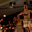Maori Cultural Show — Stock Photo #24662307