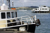 Mangonui Harbor, New Zealand — Stock Photo