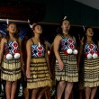 Maori Cultural Show — Stock Photo #24709439