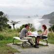 West Coast  -  New Zealand — Stock Photo