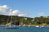 Waiheke Island New Zealand — Stockfoto