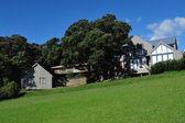 Waiheke Island New Zealand — Stock Photo