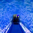 The Ice tunnel of Kelly Tarltons sea world — Stock Photo #24916957