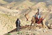 Camel Ride and Desert Activities in the Judean Desert Israel — Stock Photo