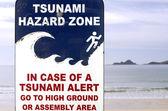 Signe de voie d'évacuation tsunami. — Photo