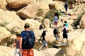 Ein Gedi Spring - Israel — Stock Photo