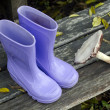 Purple boots and forest mushroom — Stock Photo