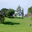 Auckland Domain — Stock Photo