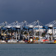 Ports of Auckland — Stock Photo