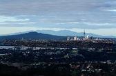 Auckland panorama — Stock fotografie