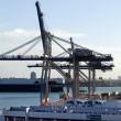 Ports of Auckland - Foto de Stock