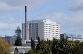 Ospedale di auckland city — Foto Stock