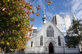 St Patrick's Cathedral in Auckland — Foto de Stock
