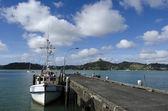 Whangaroa харбор - новая зеландия — Стоковое фото
