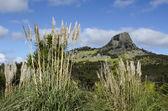 Mount Taratara - New Zealand — Stock Photo