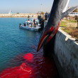 15-meter female whale died in Ashkelon harbor — Stock Photo #27474029