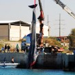 15-meter female whale died in Ashkelon harbor — Stockfoto