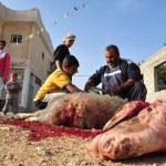 Islamic Holiday - Feast of the Sacrifice — Stock Photo #27481371