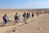 The Negev Desert - Israel — Stock Photo