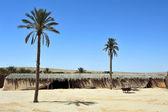 Nomads desert camp — Stock Photo
