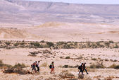 The Negev Desert - Israel — Stock Photo