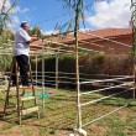 Israelis are preparing for the Jewish holiday Sukkoth — Stock Photo