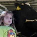 Farm girl in cow milking facility — Stock Photo #28402125