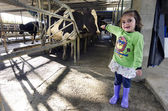 Farm girl in cow milking facility — Stock Photo