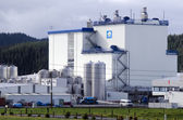 Fonterra Co-operative Group Limited — Stock Photo