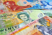 New Zealand Currency Dollar Notes — Stock Photo