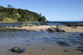 Cable Bay in Northland New Zealand — Stock Photo