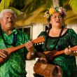 Polynesian Pacific Island Tahitian Music — Stock Photo